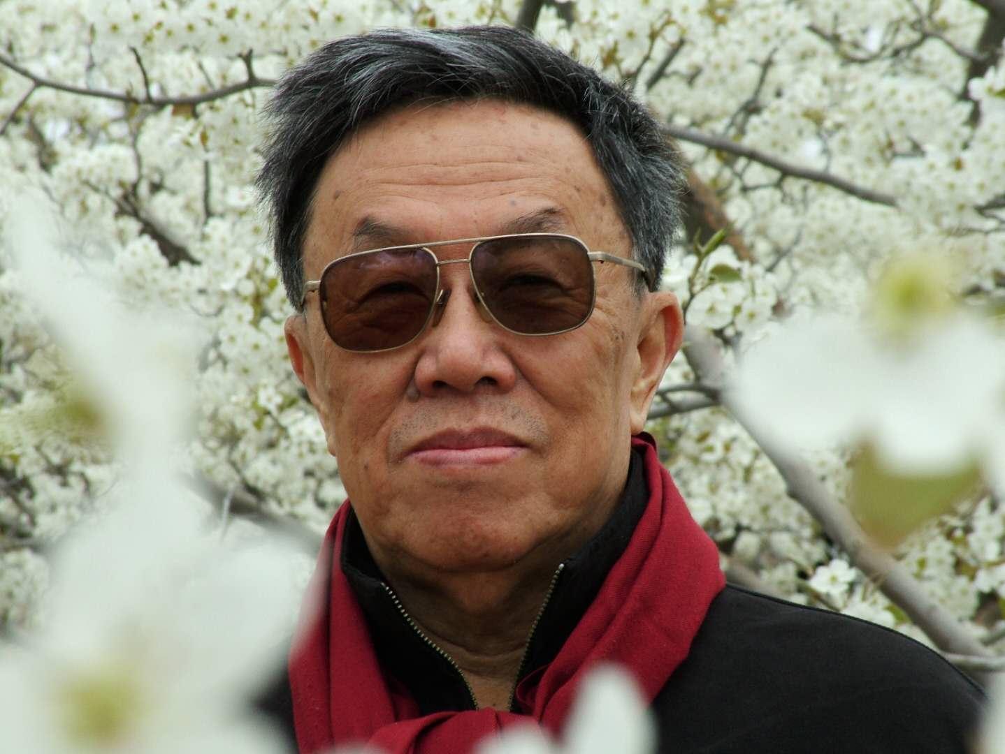 19岁就凭借《青春万岁》成名的王蒙,81岁才获茅盾文学奖