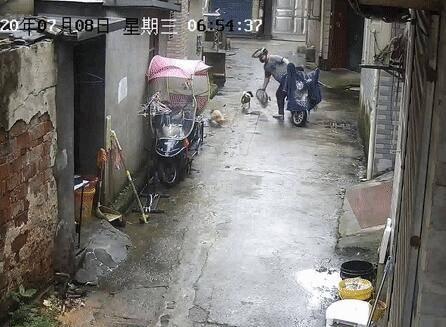 """光天化日,萧山一男子用网兜把宠物狗偷走!还有""""奇葩""""到偷这个的……"""